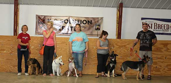 dog-training-dayton-ohio